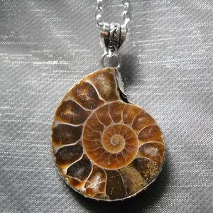 Jewelry - Fossil Pendant